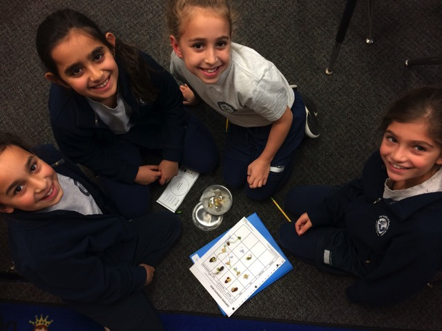 Learning About Germination
